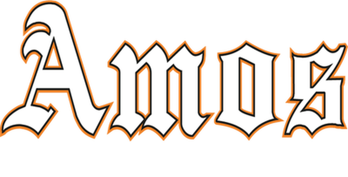Amos Group Ltd